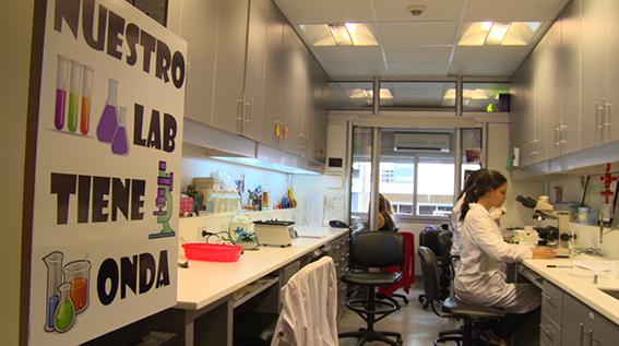 Se inauguran nuevos laboratorios en el Instituto de Biología y de Medicina Experimental (IBYME - CONICET). Inversión: $ 8.732.000