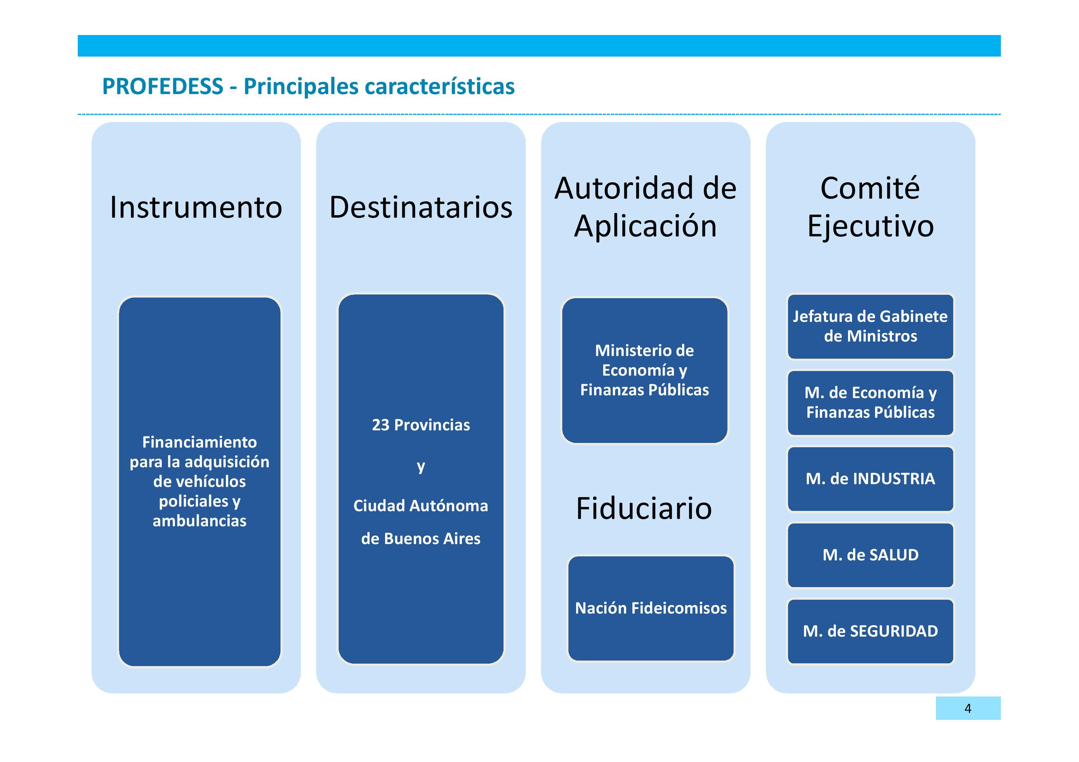 Presentación PROFEDESSV1-page-004
